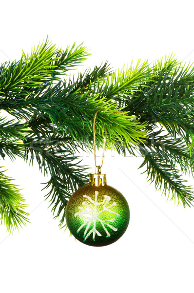 Christmas dekoracji odizolowany biały tle przestrzeni Zdjęcia stock © Elnur