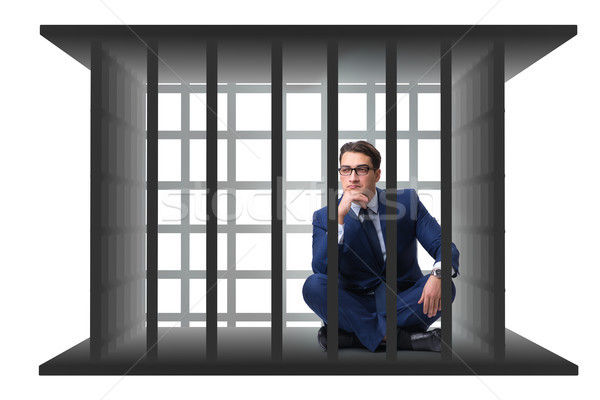 Businessman in the cage isolated on white Stock photo © Elnur