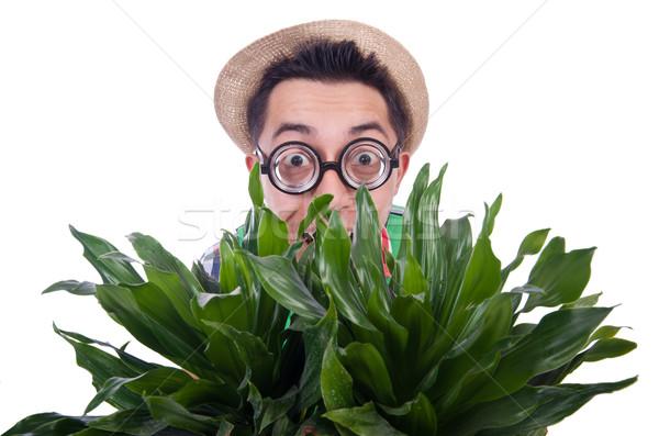 Grappig man plannen tuin bloemen glimlach Stockfoto © Elnur