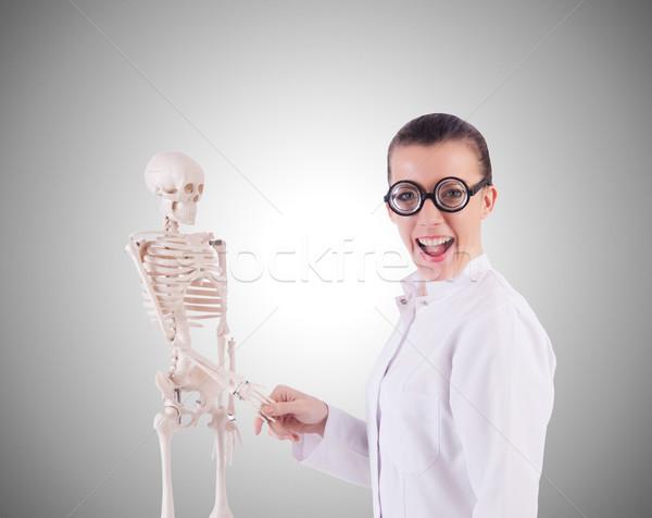 Médico esqueleto blanco hombre médicos cuerpo Foto stock © Elnur