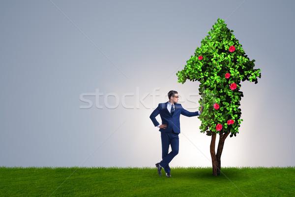 Imprenditore sostenibile verde sviluppo erba uomo Foto d'archivio © Elnur