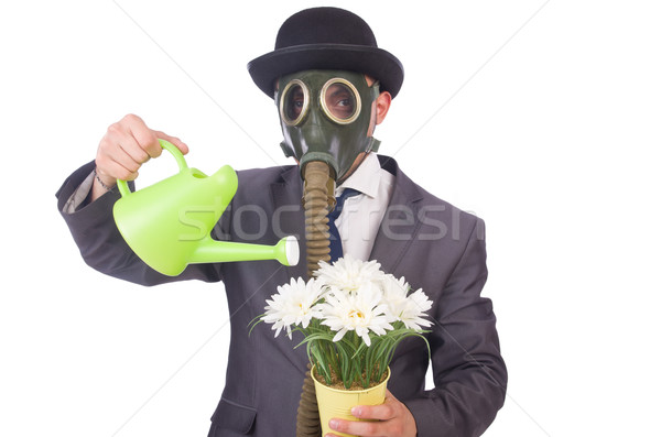Businessman wearing gas mask isolated on white Stock photo © Elnur