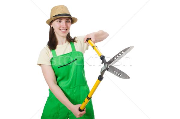 Genç kadın beyaz el çalışmak doğa Metal Stok fotoğraf © Elnur