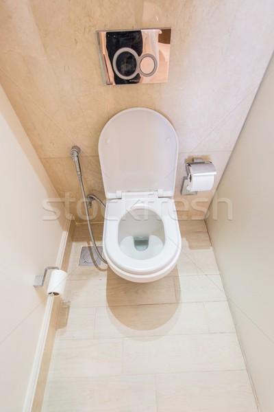Wc szoba modern belső terv otthon Stock fotó © Elnur