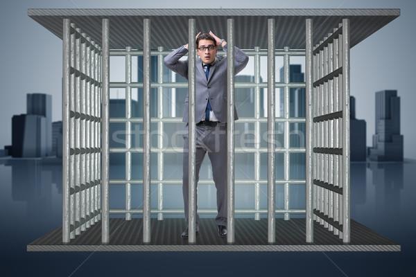 бизнесмен клетке бизнеса работу безопасности прав Сток-фото © Elnur