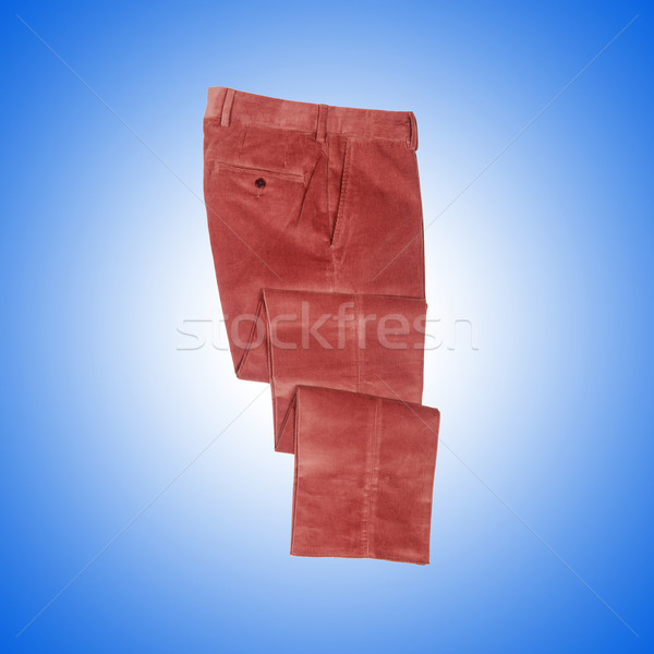 Fashion concept with trousers against gradient  Stock photo © Elnur