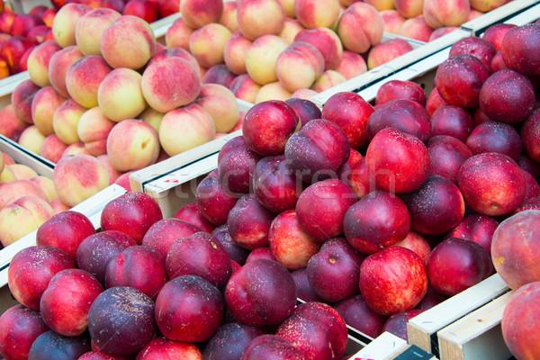 őszibarackok egészséges háttér narancs csoport gyümölcsök Stock fotó © Elnur