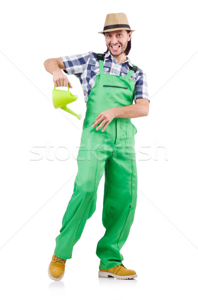 Funny gardener with watering can isolated on white Stock photo © Elnur