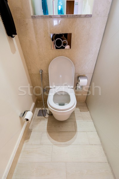 Toilet room in the modern interior Stock photo © Elnur