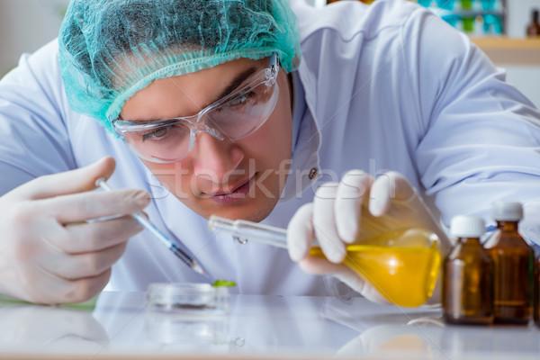 Biotechnologie wetenschapper werken lab gras technologie Stockfoto © Elnur