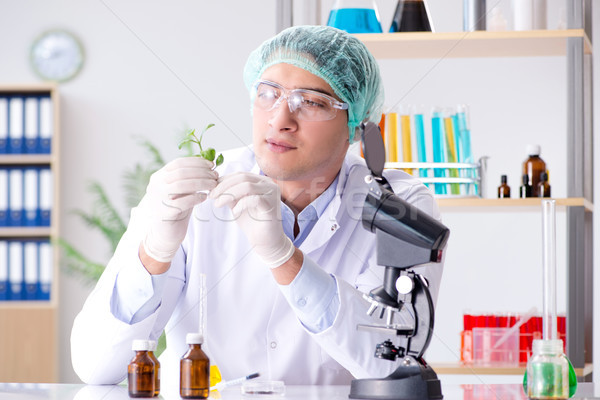 Biotechnology concept with scientist in lab Stock photo © Elnur