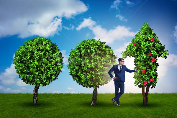 Empresario sostenible verde desarrollo hierba hombre Foto stock © Elnur