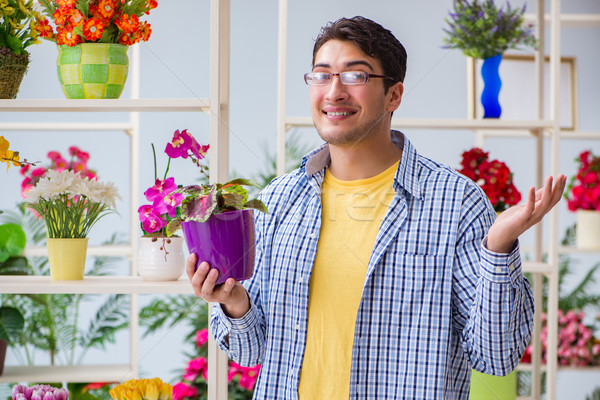 Young man florist working in a flower shop Stock photo © Elnur