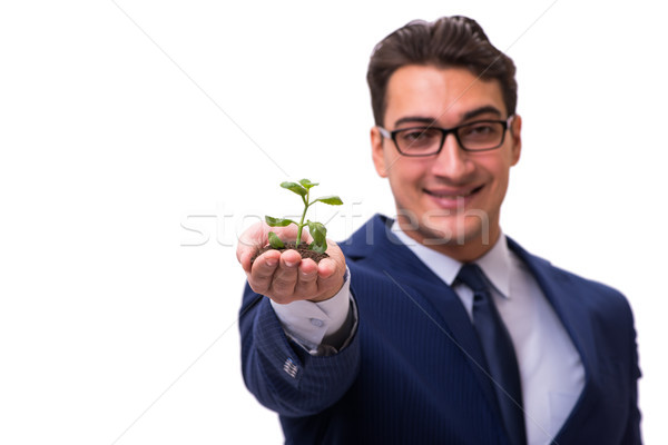 Businessman holding green sprouts isolated on white Stock photo © Elnur
