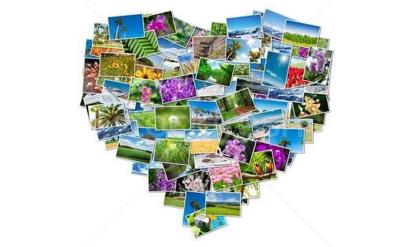 Heart shape made of nature photos Stock photo © Elnur