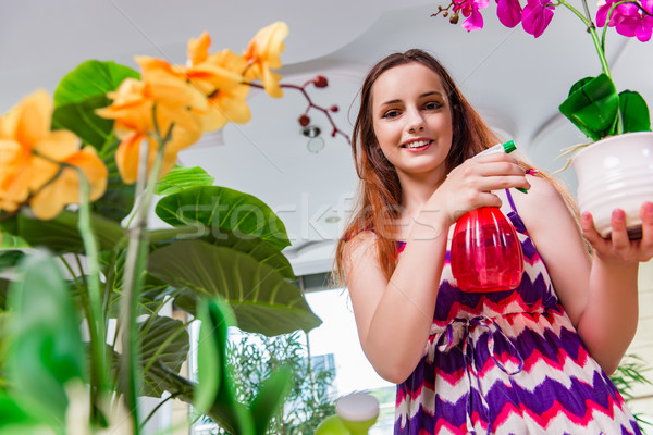 The young woman taking care of home plants Stock photo © Elnur
