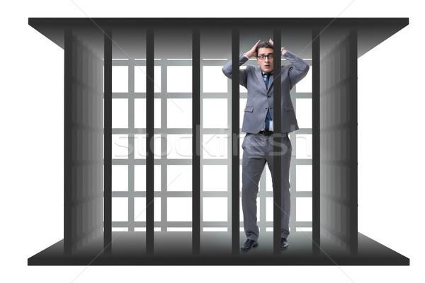 Empresario jaula aislado blanco trabajo seguridad Foto stock © Elnur