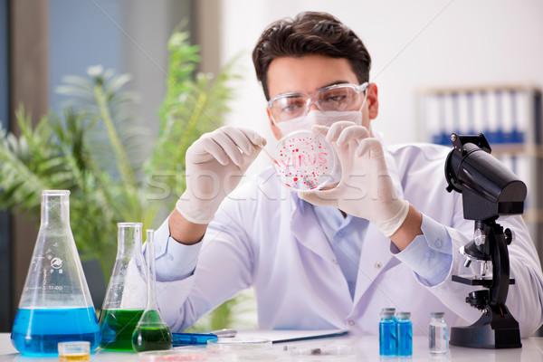 Doctor de sexo masculino de trabajo laboratorio virus vacuna hombre Foto stock © Elnur