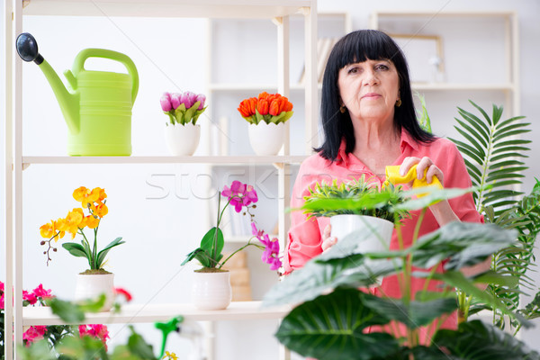 Woman florist working in the flower shop Stock photo © Elnur