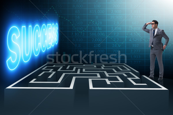 Man facing the maze in business concept Stock photo © Elnur
