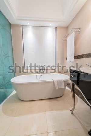 Modern elegant sink in bathroom Stock photo © Elnur