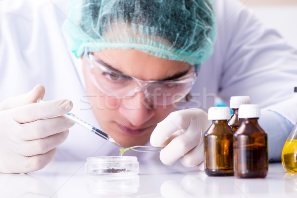 Pharmaceutical industry concept with scientist in the lab Stock photo © Elnur