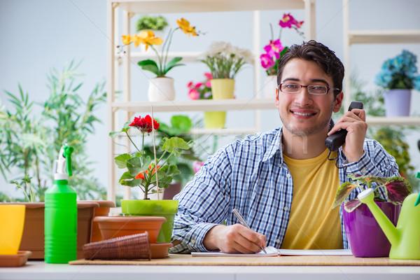 Jeune homme fleuriste travail fleur herbe Photo stock © Elnur