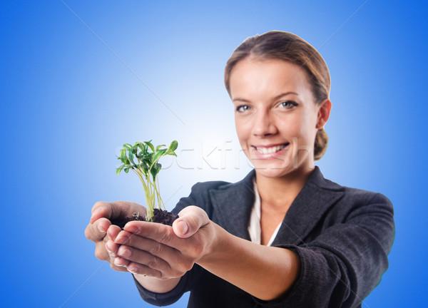 Сток-фото: деловая · женщина · рассада · белый · цветок · природы · саду