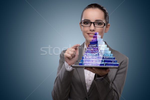 Businesswoman holding pyramid in business concept Stock photo © Elnur