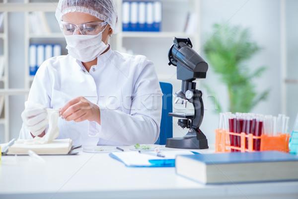 Femenino científico investigador experimento laboratorio médico Foto stock © Elnur
