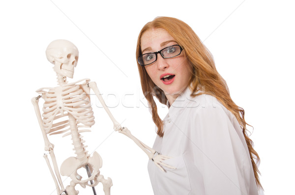 Young female doctor with skeleton isolated on white Stock photo © Elnur