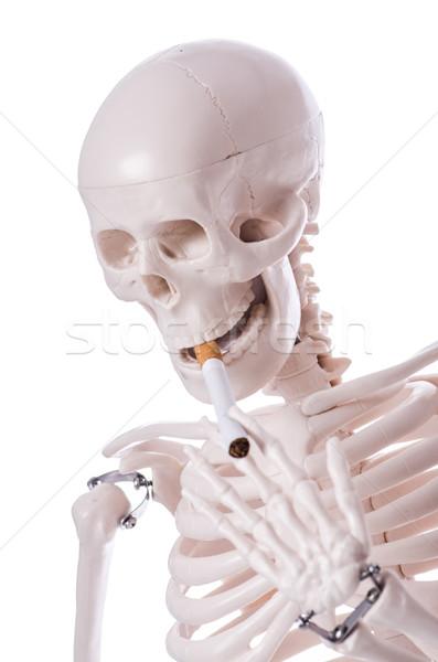 скелет курение сигарету изолированный белый человека Сток-фото © Elnur