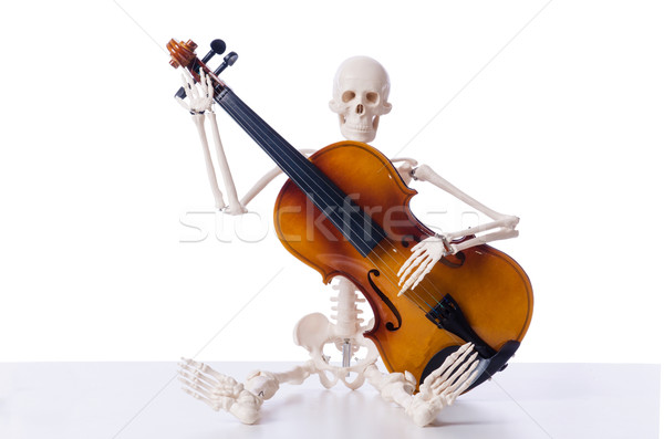 Skeleton playing violin isolated on the white Stock photo © Elnur