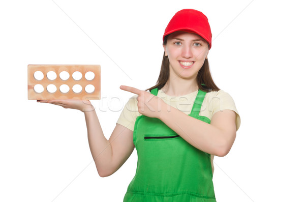 Woman holding clay brick isolated on white Stock photo © Elnur