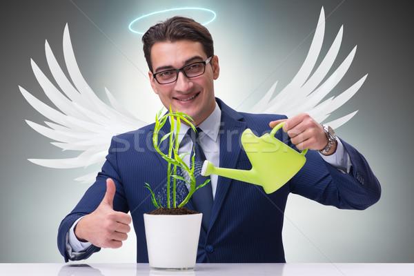 Zakenman engel groeiend toekomst Stockfoto © Elnur
