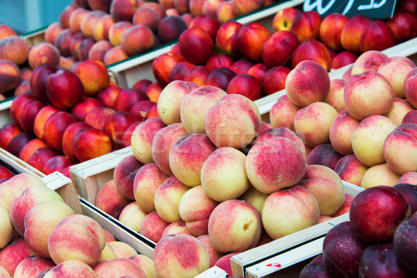 Nectarines and peaches in  healthy concept Stock photo © Elnur