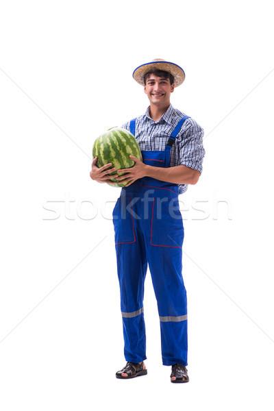 ストックフォト: 小さな · 農家 · スイカ · 孤立した · 白 · ビジネス