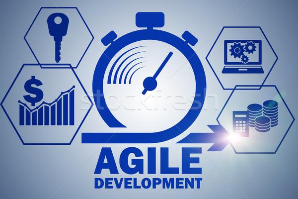 ágil software desenvolvimento negócio reunião trabalhar Foto stock © Elnur