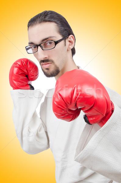 Karatê lutador isolado branco esportes fitness Foto stock © Elnur