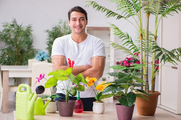 Fiatalember kertészkedés otthon virág fű férfi Stock fotó © Elnur
