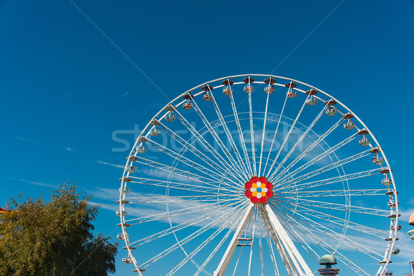 Ferris wheel in entertainment center Stock photo © Elnur