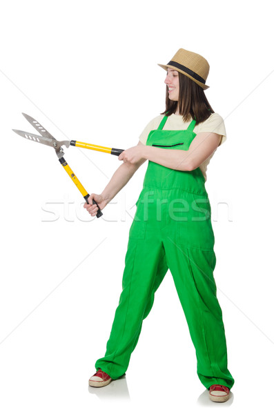 Young woman with shears on white Stock photo © Elnur