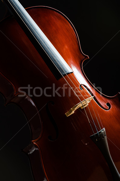 Violin in dark room  - music concept Stock photo © Elnur
