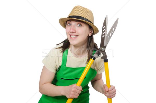 若い女性 白 手 作業 自然 金属 ストックフォト © Elnur
