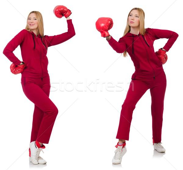 Mujer boxeador aislado blanco negocios nina Foto stock © Elnur