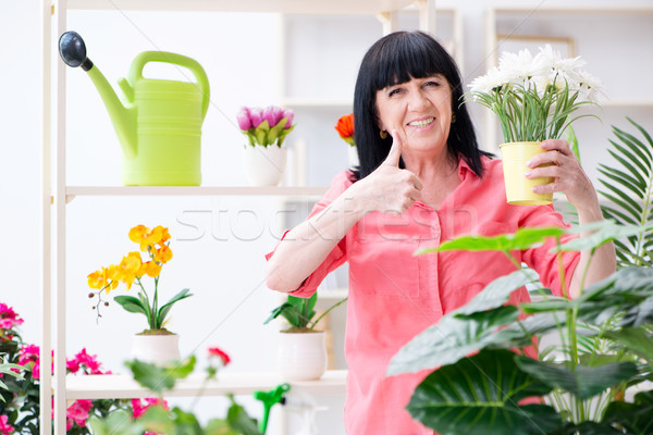 女性 花屋 作業 花屋 自然 ホーム ストックフォト © Elnur