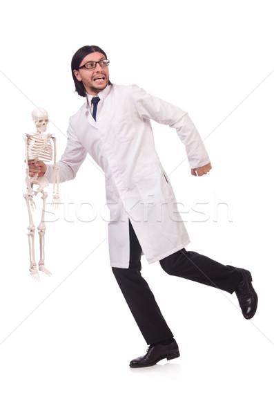 Funny maestro esqueleto aislado blanco hombre Foto stock © Elnur