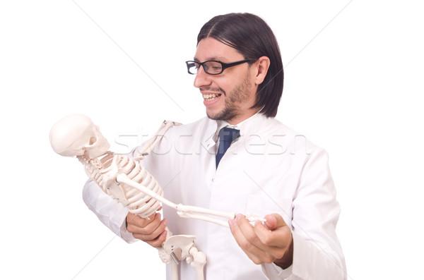 Vicces tanár csontváz izolált fehér férfi Stock fotó © Elnur