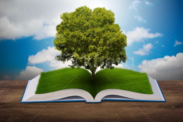 Open boek papier recycling 3D boom Stockfoto © Elnur
