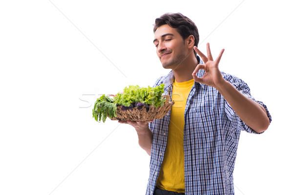 Férfi kosár gyümölcsök zöldségek boldog kert Stock fotó © Elnur